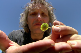 New Documentary Explores the Future of Seeds
